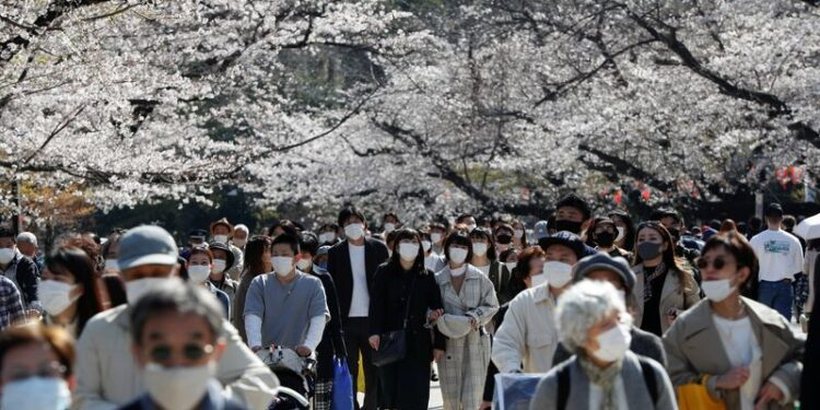 Visitors wearing protective face masks admire blooming cherry blossoms amid the coronavirus disease (COVID-19) pandemic, at Ueno Park in Tokyo